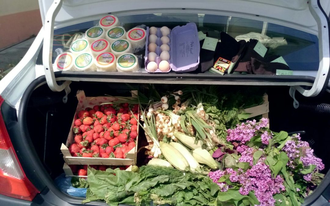 În atenţia locuitorilor Sectorului 6:  Nu mai achiziţionaţi produse alimentare din locuri neautorizate!
