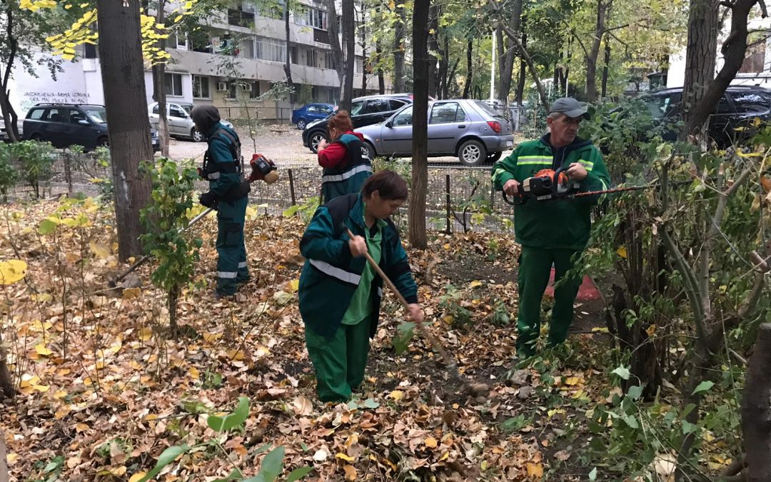 În Sectorul 6, continuă întreținerea spațiilor verzi de la blocuri