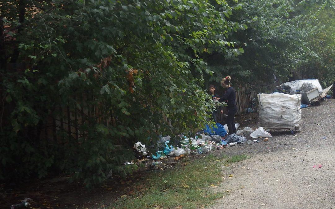 Adăposturile improvizate de către persoanele fără adăpost din zona Lujerului  au fost dezafectate de autoritatea locală