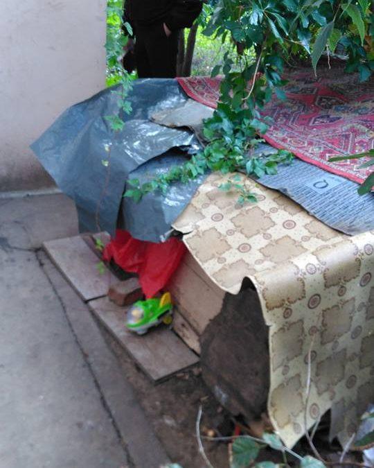 Adăposturile improvizate în Cartierul Militari au fost dezafectate de către autoritatea locală