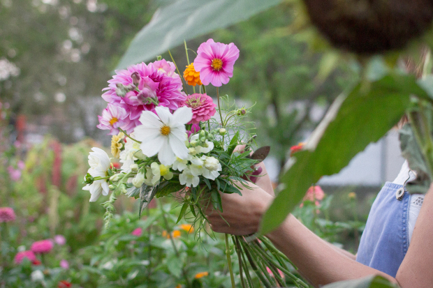 Cursuri gratuite în Sectorul 6 pentru cei care vor să devină frizeri sau florari-decoratori