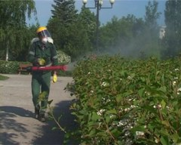 Stropiri împotriva dăunătorilor vegetali, în parcurile Sectorului 6