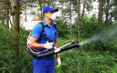 Tratamente împotriva șobolanilor, țânțarilor și căpușelor, în Sectorul 6