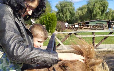 O vizită la Ferma Animalelor pentru copiii cu dizabilităţi