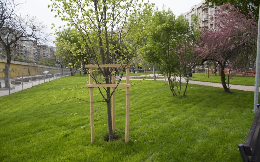 Tratamente împotriva dăunătorilor vegetali pe spațiile verzi din Sectorul 6