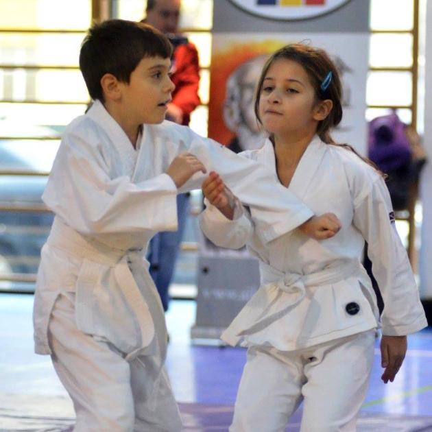 """Aikido, calea toleranței și autoapărării, poate fi studiat la """"Conac"""""""